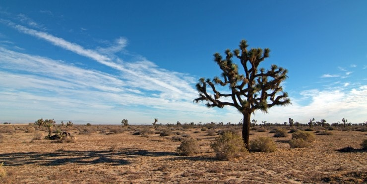 southern california dry arid climate desert